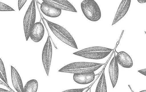 Conservacion aceite de oliva Almazara